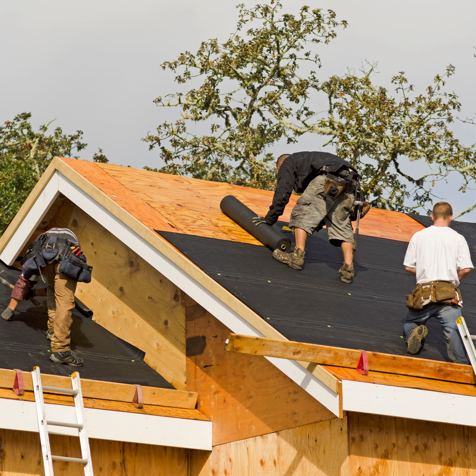 Expert Roofing Service