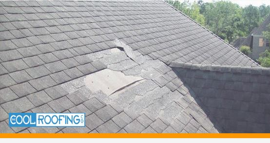 A Roof in Need of Repair
